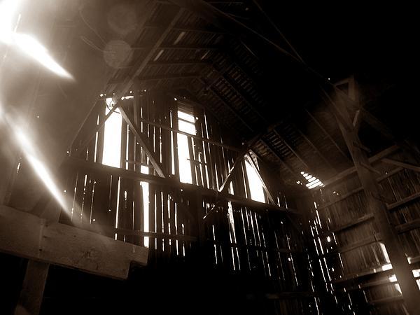 Chris Phillips - Barn In Sepia