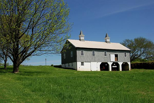 Barn In The Country - Bayonet Farm Print by Angie Tirado