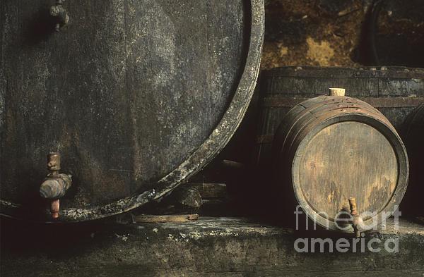 Barrels Of Wine In A Wine Cellar. France Print by Bernard Jaubert