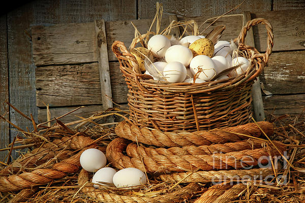Basket Of Eggs On Straw Print by Sandra Cunningham