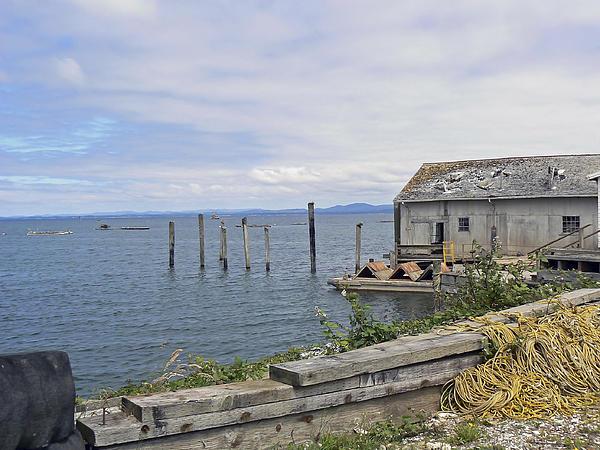 Pamela Patch - Bayside Boat Barn