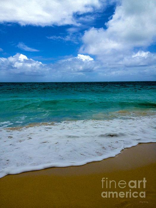 Beach Beauty Print by Cheryl Young