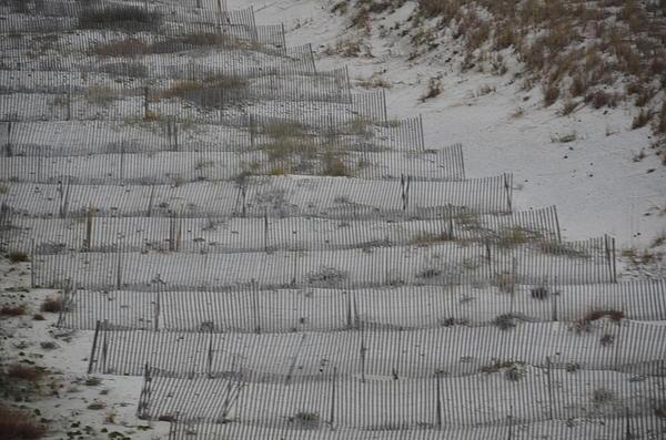 Randy J Heath - Beach Erosion
