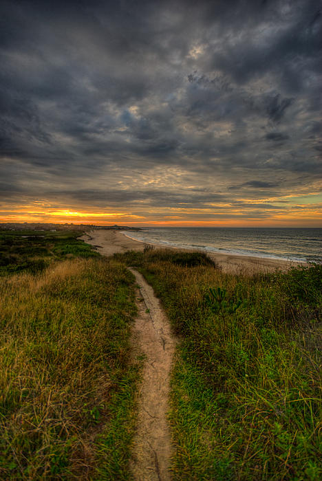Beach Trail Print by Mike Horvath