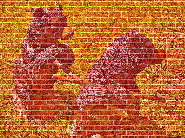 Randy Rosenberger - Bear Wall