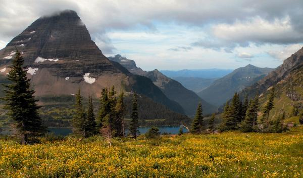 Bearhat Mountain Glacier National Park Photograph  - Bearhat Mountain Glacier National Park Fine Art Print