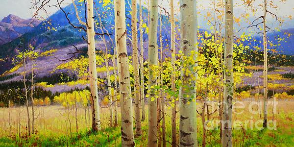 Gary Kim - Beauty of Aspen Colorado