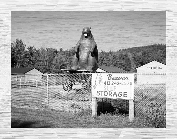 George Goulas - Beaver Self Storage