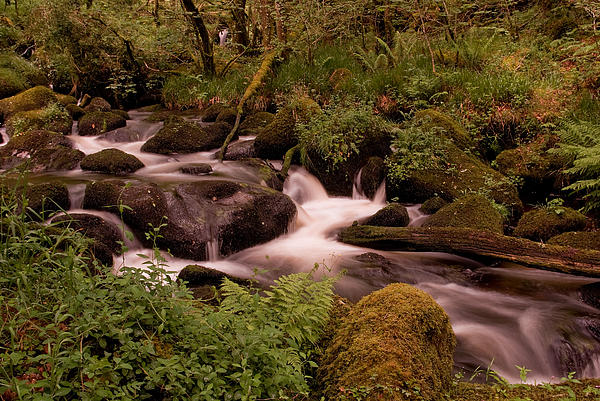 Becky Falls On Dartmoor's National Park Print by Jay Lethbridge
