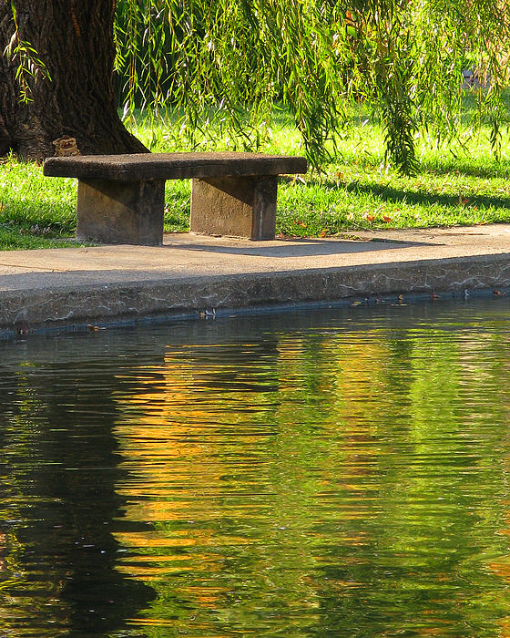 Greg Matchick - Bench and Reflections in Tower Grove Park