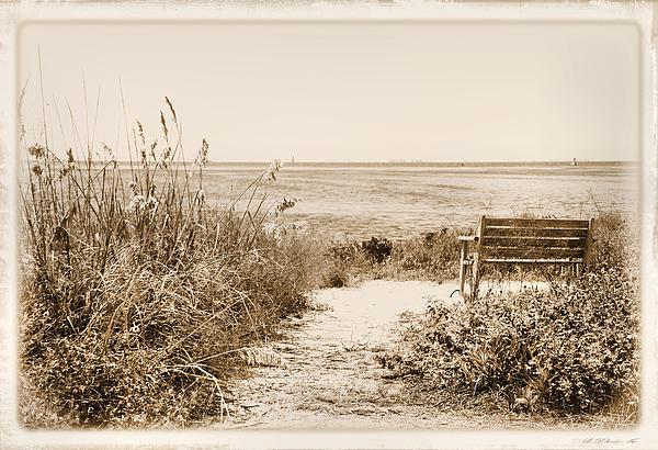 Rosalie Scanlon - Bench with a View