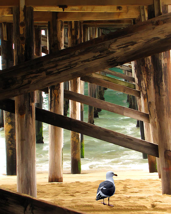 Beneath The Pier Print by Diane Wood