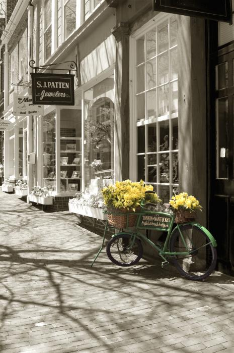 Bicycle With Flowers - Nantucket Photograph  - Bicycle With Flowers - Nantucket Fine Art Print