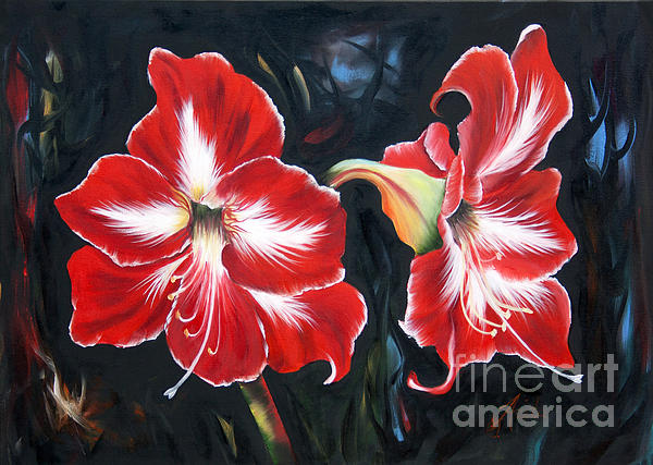 ILONA ANITA TIGGES - GOETZE  ART and Photography  - Big Red Amaryllis