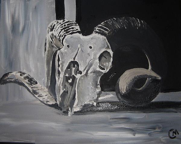 Bighorn Sheep Skull by Charlie Mumah