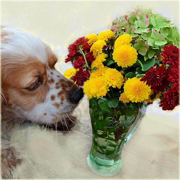 Debbie Portwood - Bingo Sniffing the flowers
