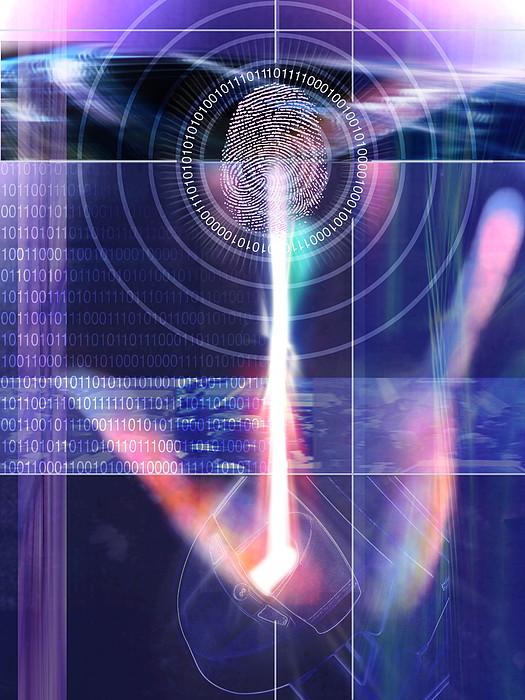Biometric Fingerprint Print by Pasieka