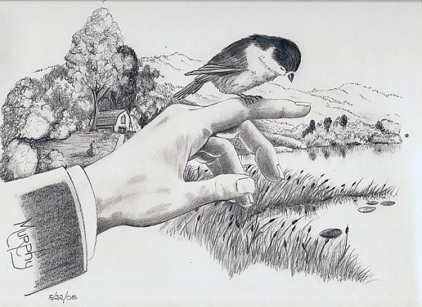 Bird In Hand Print by Murphy Elliott