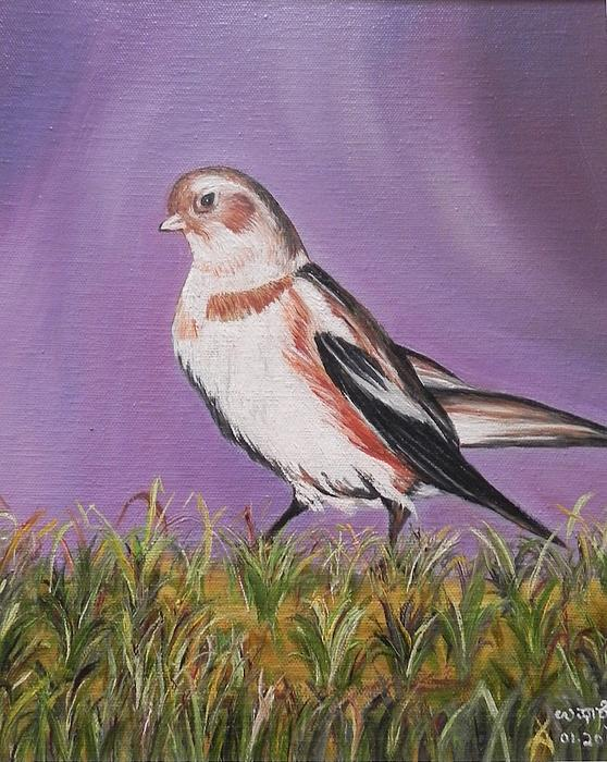 Bird Print by Usha Rai