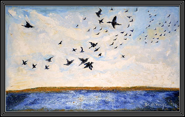 Anand Swaroop Manchiraju - Birds In Flight At Pushkar
