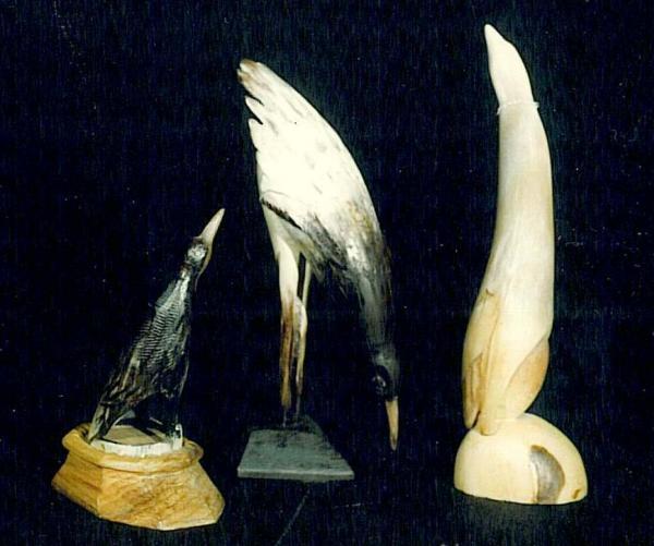 Sorin Apostolescu - Birds
