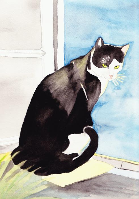 Black And White Cat Print by Michaela Bautz