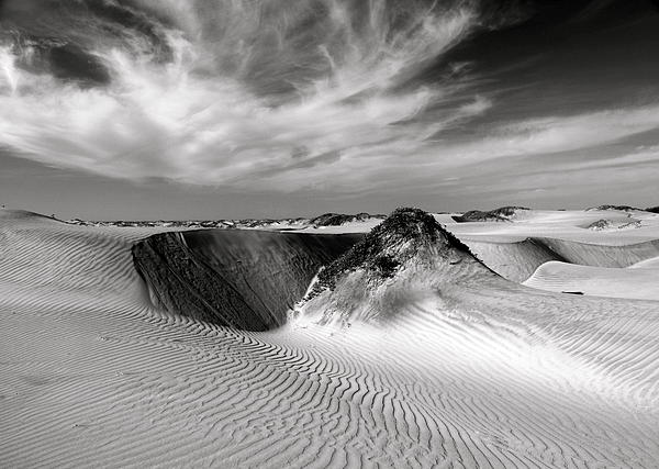 Michael Cinnamond - Black and White Dunes