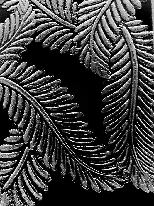 Black And White Leaves Print by Tanya Moody