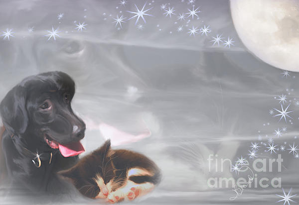 Black Lab And Kitten Collage Print by Judy Brand