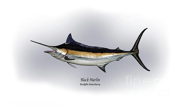 Black Marlin Print by Ralph Martens