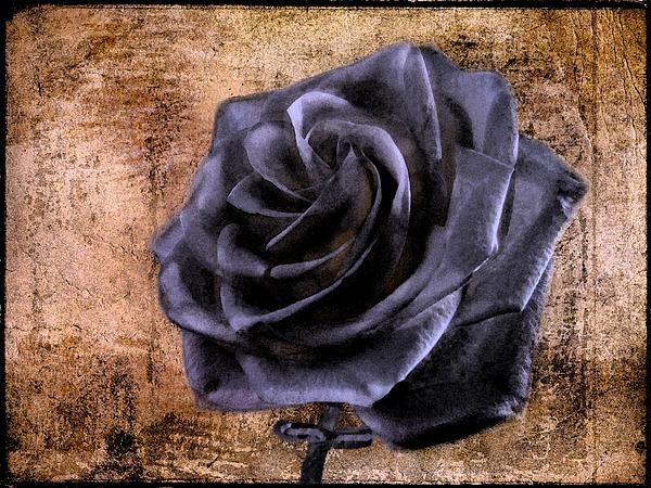 David Dehner - Black Rose Eternal