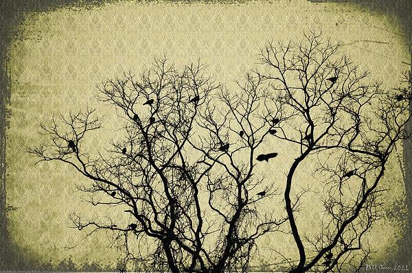 Blackbirds Roost Print by Bill Cannon