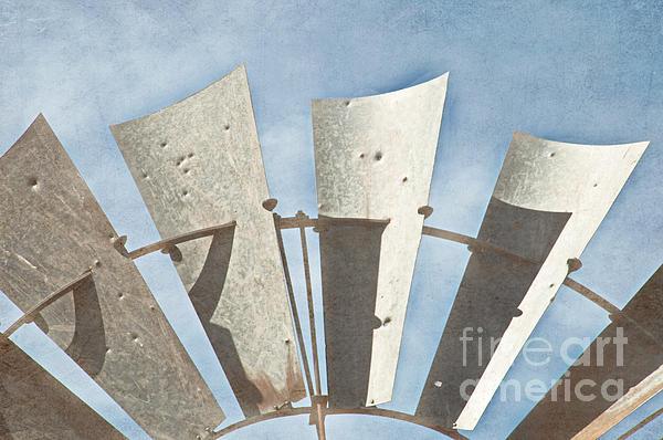 Blades - Texture Print by Bob and Nancy Kendrick