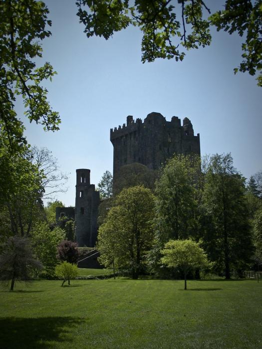 Blarney Castle Ireland Print by Teresa Mucha