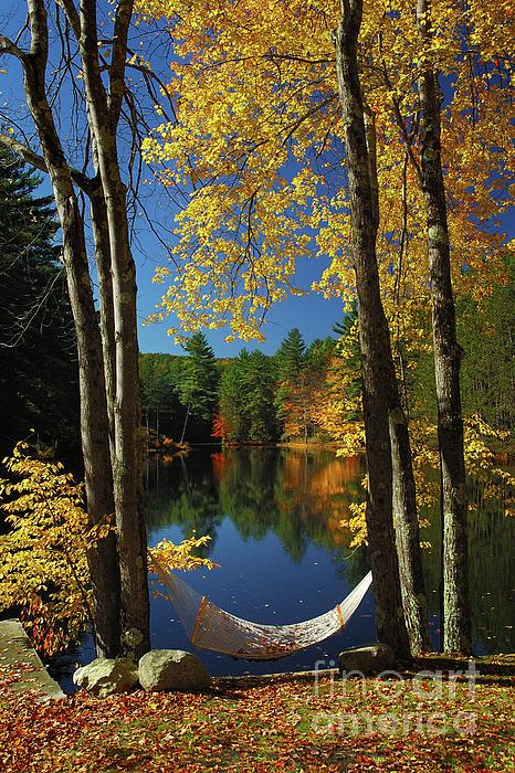 Bliss - New England Fall Landscape Hammock Print by Jon Holiday