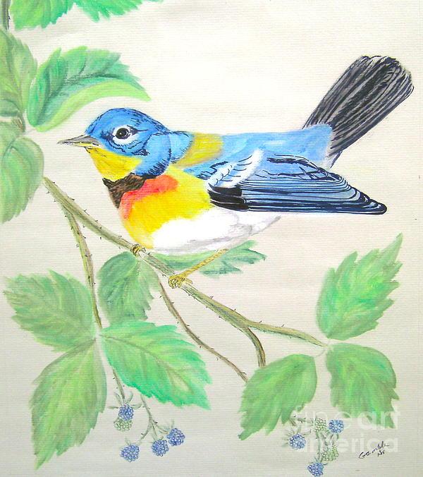 Nancy Rucker - Blue Bird of Happines  II