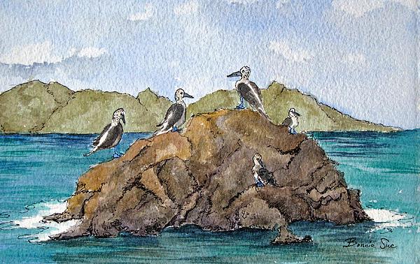 Blue Footed Boobies In Galapagos Print by Bonnie Sue Schwartz