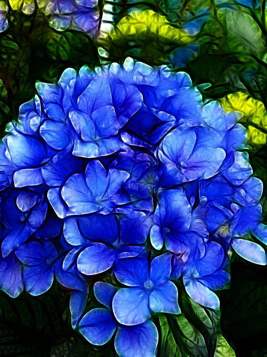 Blue Hydrangea Abstract Print by Cindy Wright