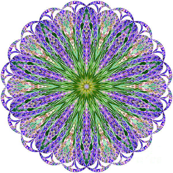 Carol F Austin - Blue Lavender Floral Kaleidoscope
