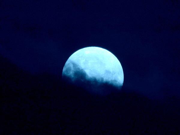 Blue Moon Print by Joyce Woodhouse