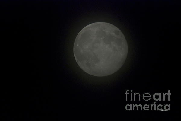 Blue Moon Print by Thomas Woolworth