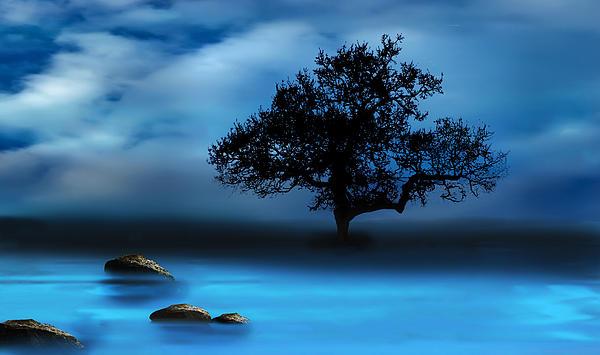 Katy Breen - Blue Night