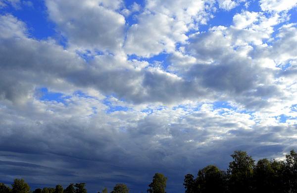 Jack Jk Morland - Blue skies