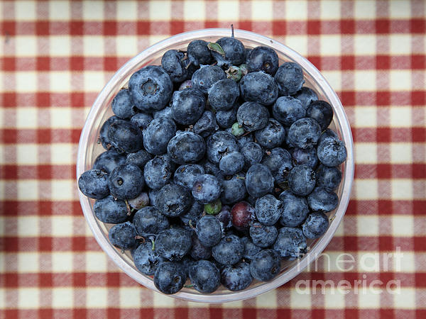 Blueberries - 5d17825 Print by Wingsdomain Art and Photography