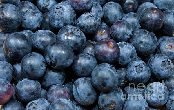 Blueberries Print by Michael Waters
