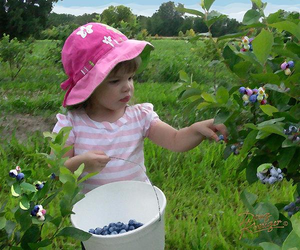 Doug Kreuger - Blueberry Girl