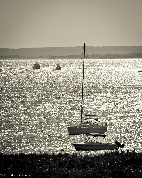 Jerri Moon Cantone - Boats in Black and WHite