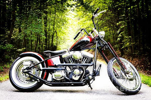 Bobber Harley Davidson Custom Motorcycle Print by Kim Fearheiley