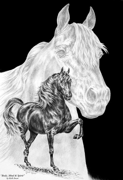 Body Mind and Spirit - Morgan Horse Print Drawing by Kelli Swan ...