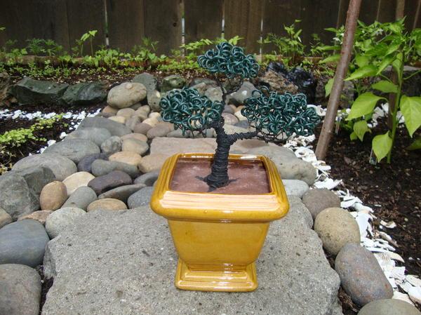 Bonsai Tree Medium Square Golden Vase Print by Scott Faucett